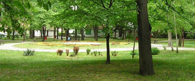 soko banja park