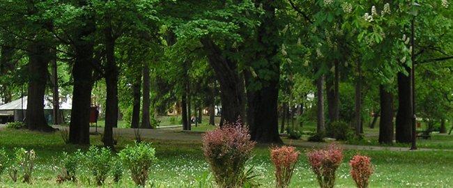 sokobanjski park